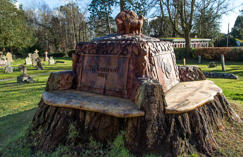 butleigh-yew-tree-stump