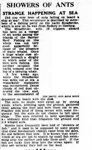 ANT RAIN  The Argus 13 sept 1934.jpg