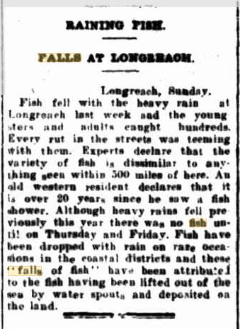 Fish Fall Maryborough Chronicale  17 March 1924.JPG