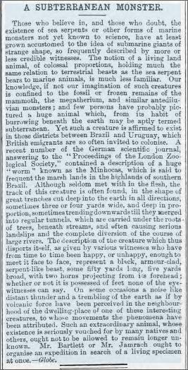 Giant horned worm Brazil, Aberdare Times 2 March 1878.jpeg
