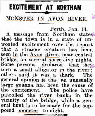 MONSTER in Avon River  Kalgoorlie Miner 15 jan 1929.jpg