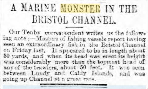 Sea Monster Bristol Channel 14 June Cardiff Times.jpeg