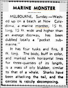 Sea Monster Melbourne, Advocate 10 Aug 1942.jpeg