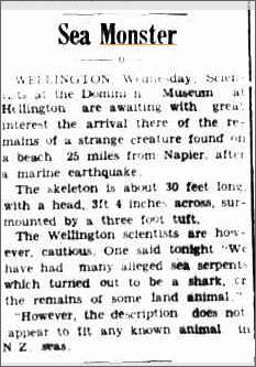 Sea Monster Wellington, National Advcate 11 Jan 1951.jpeg