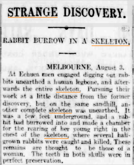 SKELETON Rabbit burrow The Register (Adelaide SA) 4 Aug 1906.jpg