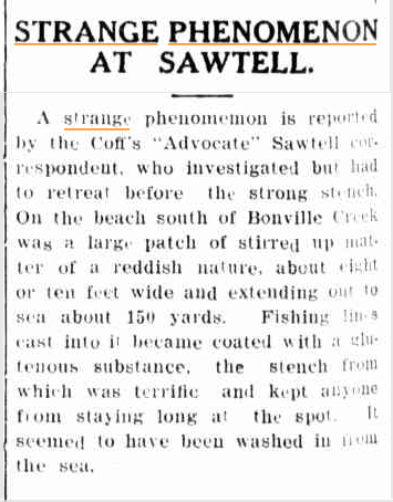 STRANGE STENCH SEA The Grenfell Record and Lachian District Advertiser NSW 13 May 1940.jpg